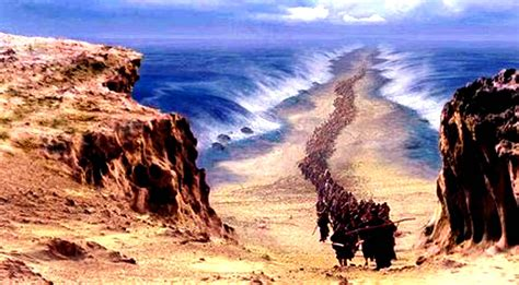 The Red Sea Crossing Has Been Found! (VIDEO) | I Love