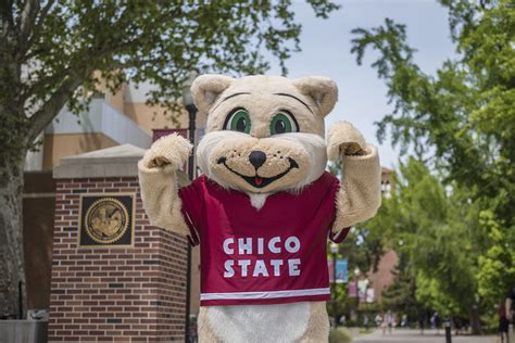 Student Accounts – Student Financial Services – CSU, Chico
