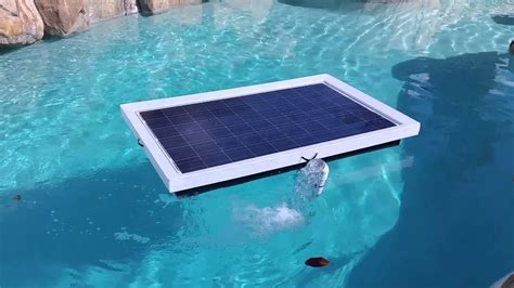 2015 Natural Current Solar Pool Pump Filter System - YouTube