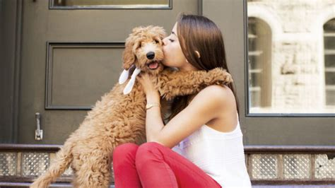 How to Become a Successful Pet Sitter | STYLETAILS