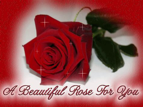 A beautiful rose for you - Flowers graphics for Facebook